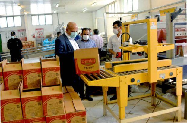 تداوم تلاش مردان نیشکر در سنگر تولید