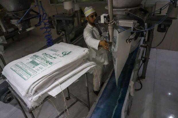 بیش از ۶۱۸هزار تن شکر از نیشکر در خوزستان تولید شد