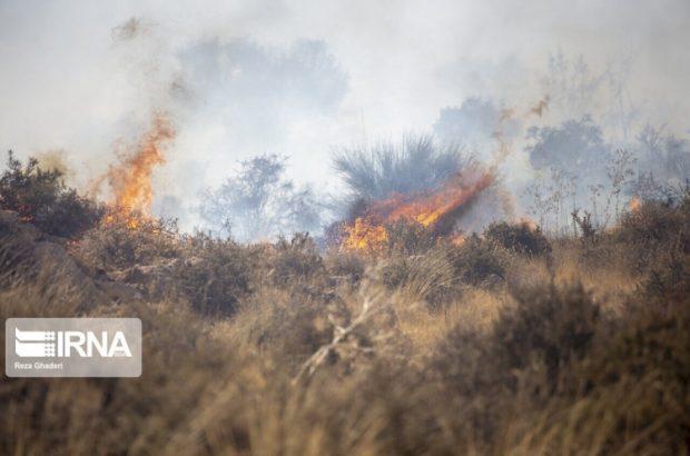 وقوع ۳۳ مورد آتش سوزی در مناطق حفاظت شده خوزستان در بهار ۱۴۰۰