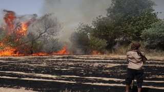 آتش در خرمن خوزستان/ وقتی عوامل طبیعی و انسانی دست در دست هم میدهند