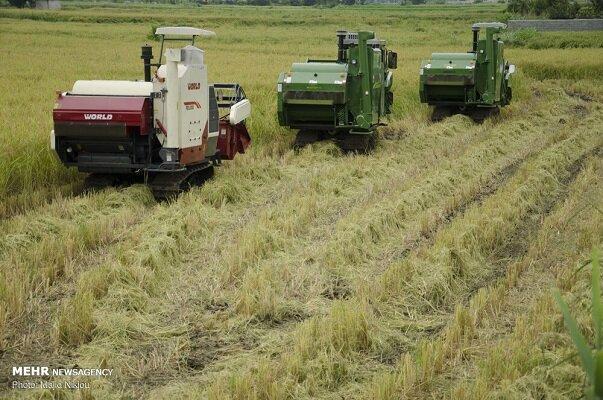 تغییر کاربری اراضی تهدید جدی بخش کشاورزی خوزستان است