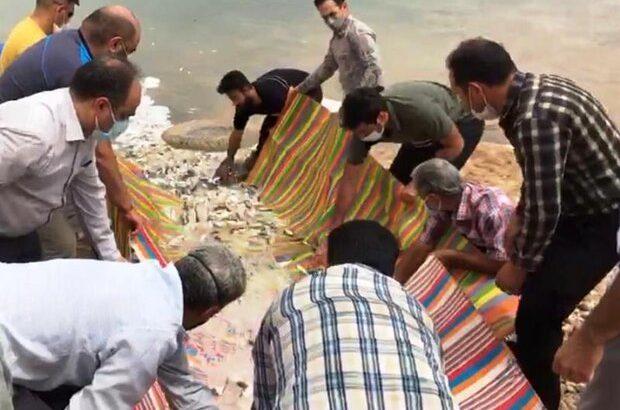 ۱۳۰ هزار بچه ماهی در خرمشهر رهاسازی شد