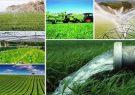 صدور مجوز ۴۹ فقره موافقت اصولی و بهره برداری طرح های کشاورزی در خوزستان