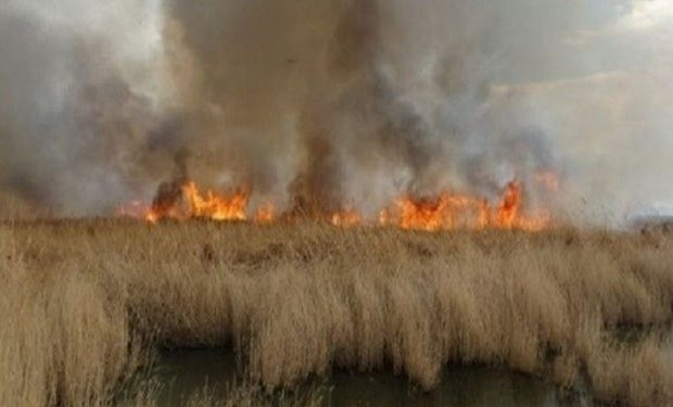 مشکلات زیست محیطی عامل حاشیهنشینی در خوزستان است