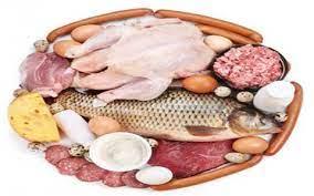 بازرسی های انجام شده از مواد پروتئینی در مرداد ماه سال جاری